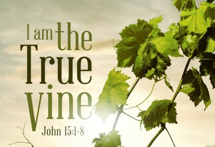 Jesus Is the Vine! We Are the Branches.